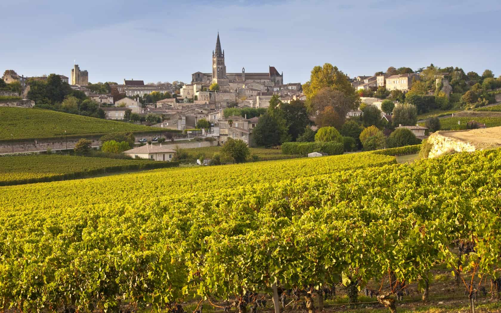 Ten most beautiful vineyards and wine regions in europe for Bordeaux france